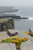Irish landscape - view from Dun Aengus, an ancient fort on Aran Islands, Ireland