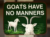 Goats Have No Manners