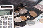Polish Money - Zloty, Coins, Calculator And Wallet