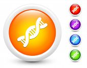 DNA Icons on Round Button Collection Original Illustration
