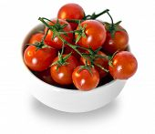 Tomatoes In White Cup