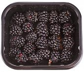 Ripe BlackBerries  in plastic container box, isolated over a white background