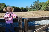 Little Girl Leans on a Fence Looking out to a Pasture