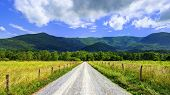 image of cade  - Sparks Lane in Cades Cove near Gatlinburg - JPG