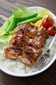 teriyaki chicken on rice, japanese cuisine