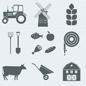 Vector illustration on the theme of agriculture