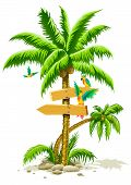 tropical palm tree with wooden signs and parrot birds
