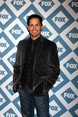 LOS ANGELES - JAN 13:  Nicholas Gonzalez at the FOX TCA Winter 2014 Party at Langham Huntington Hote