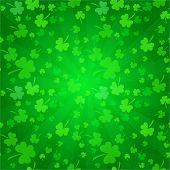 foto of clover  - Clovers background for Happy St - JPG