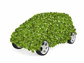 Green Leaves Car