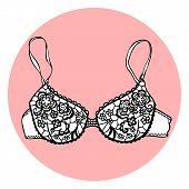 Lacy sexy vector bra.