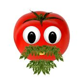 Healthy Eating. Funny Face Made Of Vegetables And Fruits With Open-eyed