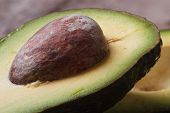 Avocado Seed Closeup