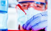 Scientist researching in genetic laboratory, Genetics field of biology  study of genes, heredity, an