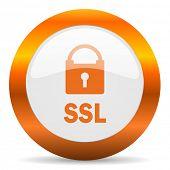 ssl computer icon on white background