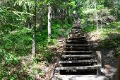Old wooden stairs in the forest. Sigulda.