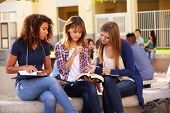 Three Female High School Students Working On Campus