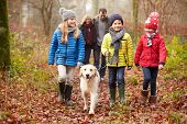 stock photo of 5s  - Family Walking Dog Through Winter Woodland - JPG