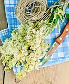 foto of meadowsweet  - Bouquet of fresh flowers of meadowsweet with a knife and a coil of rope on a napkin on the background of wooden boards