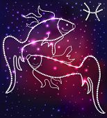 Cosmos Fish Constellation Of The Stars And Gems