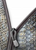Snake Leather With Zipper