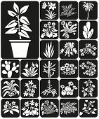 picture of peyote  - white icons on black background theme houseplants and flowers - JPG