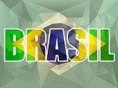 Brazilian Flag Vector with Brasil text