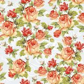 Seamless floral pattern with of pink roses with ornament. Elegance vector illustration