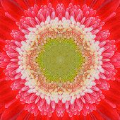 Red Mandala Concentric Flower Center Kaleidoscope