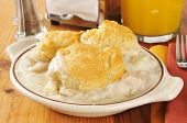 stock photo of biscuits gravy  - A chicken and potato casserole topped with golden biscuits - JPG