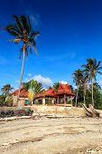 House, Palm Tree, Coast