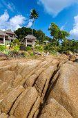 Bungalow, Palm Trees, Stones