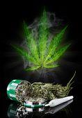 Dried cannabis plant, marijuana on black background