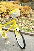 Beautiful yellow bicycle in autumn park with maple leaves in basket