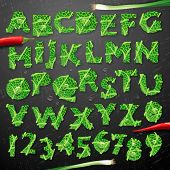 Green leaf lettuce alphabet