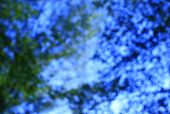 Natural Green And Blue Blured Background With Bokeh