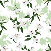 Lilies natural seamless background
