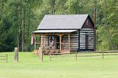 pic of hillbilly  - Little log cabin in the woods - JPG