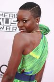 LOS ANGELES - NOV 23:  Danai Gurira at the 2014 American Music Awards - Arrivals at the Nokia Theater on November 23, 2014 in Los Angeles, CA