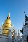 The Golden Pagoda At Wat Suan Dok, Chiang Mai, Thailand. The Beautiful Pagoda In Contrasted With Bea