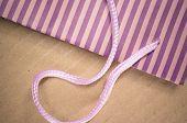 Colored Stripes Paper Bag