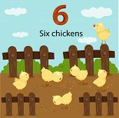 Illustrator of number six chickens