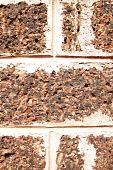 Laterite Wall