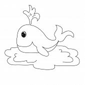 picture of whale-tail  - The sample for coloring - JPG