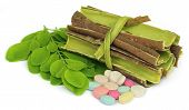 picture of malunggay  - Moringa leaves and bark with pills over white background - JPG