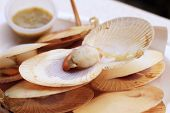stock photo of scallops  - Closeup Grilled Scallops at market edible background - JPG