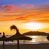 stock photo of elm  - Majorca sunset in sant Elm near sa Dragonera at Mallorca Balearic islands of spain - JPG