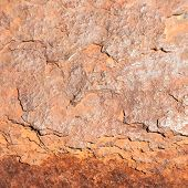 image of oxidation  - Inside the rust - JPG