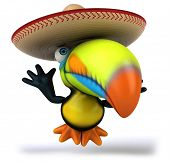 image of toucan  - Fun toucan - JPG