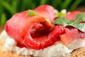stock photo of scallion  - Sandwich with gravlax parsley scallion and cream cheese on spring grass background closeup macro - JPG